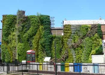 Edgware Road Station Green Wall.