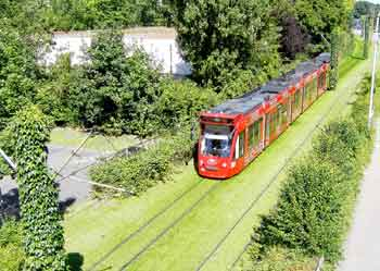 Light rail / tram / streetcar private right of way flanked by privet hedges with grass growing between the tracks.