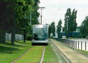 Light rail / tram / streetcar private right of way with grass growing between the tracks.