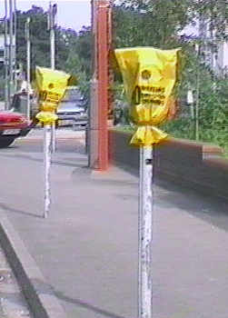 Parking meters with 'no parking / loading / waiting' hoods.