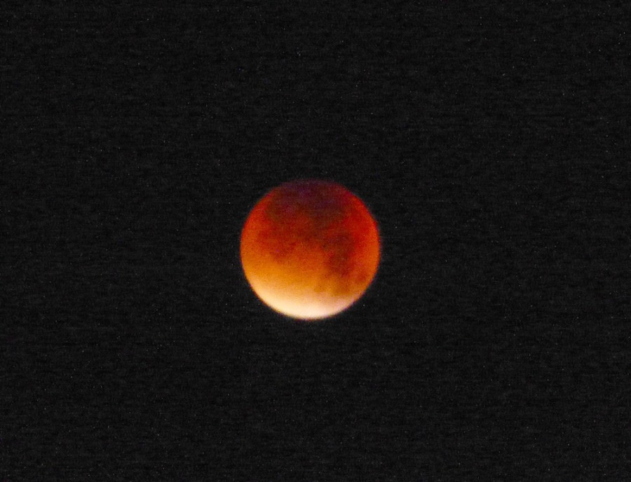 BloodMoonEclipse-Sept2015-P1360667.jpg