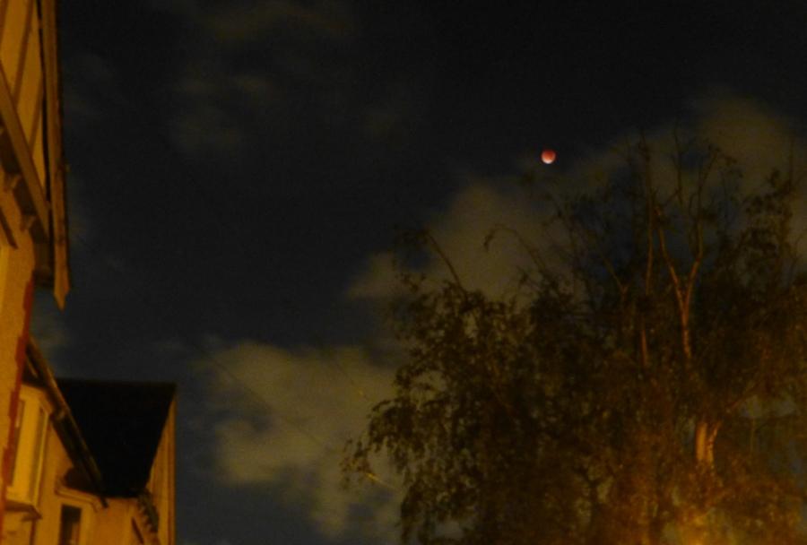 BloodMoonEclipse-Sept2015-P1360674.jpg